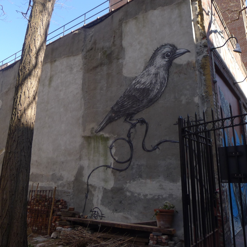 Piece by ROA on 2nd Street