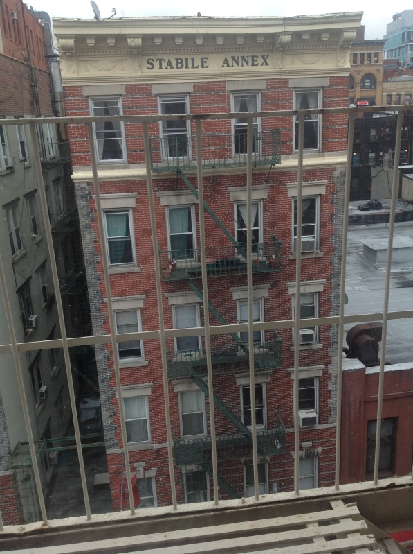The view from my Mulberry Street window as snow starts to fall
