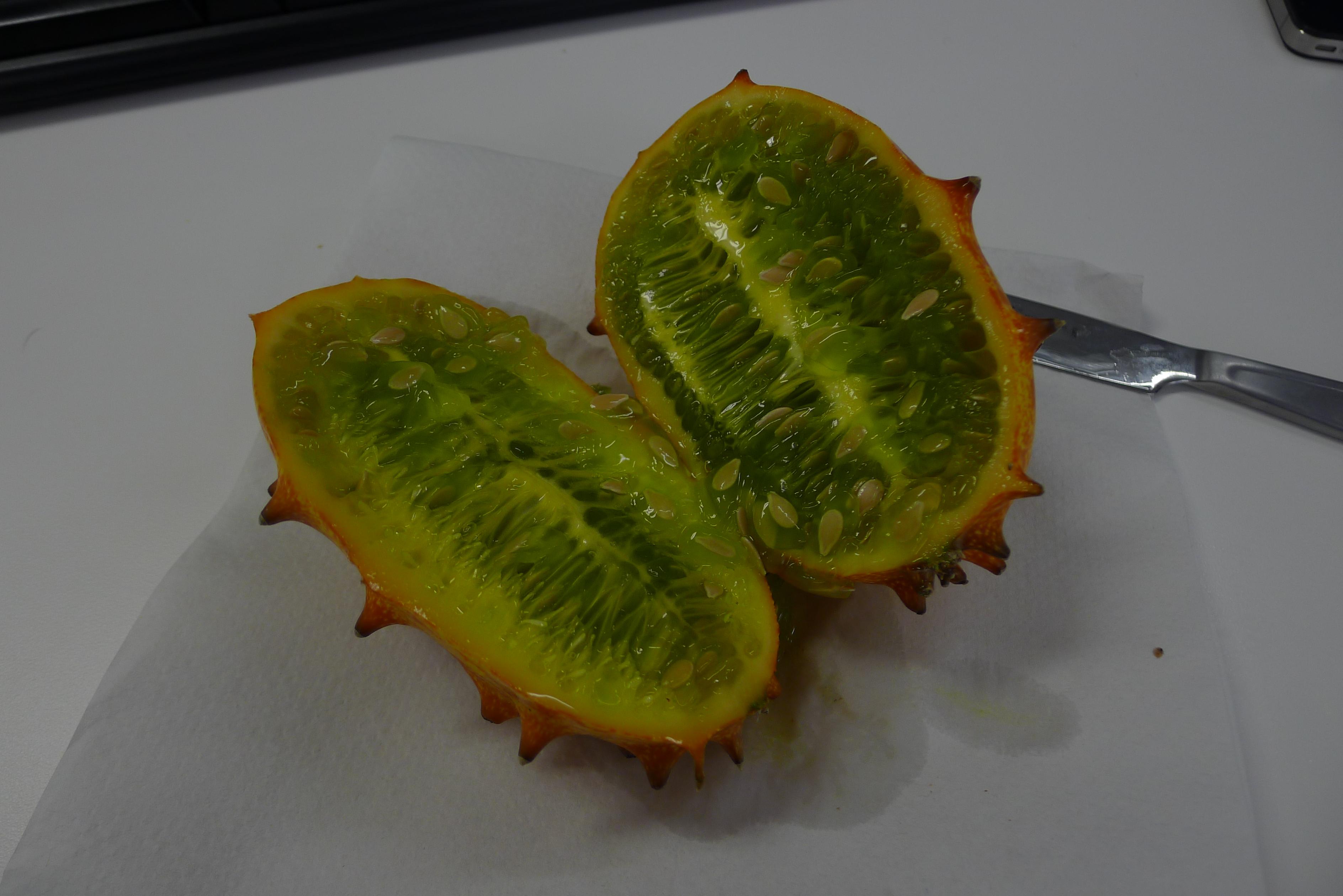 Horny melon